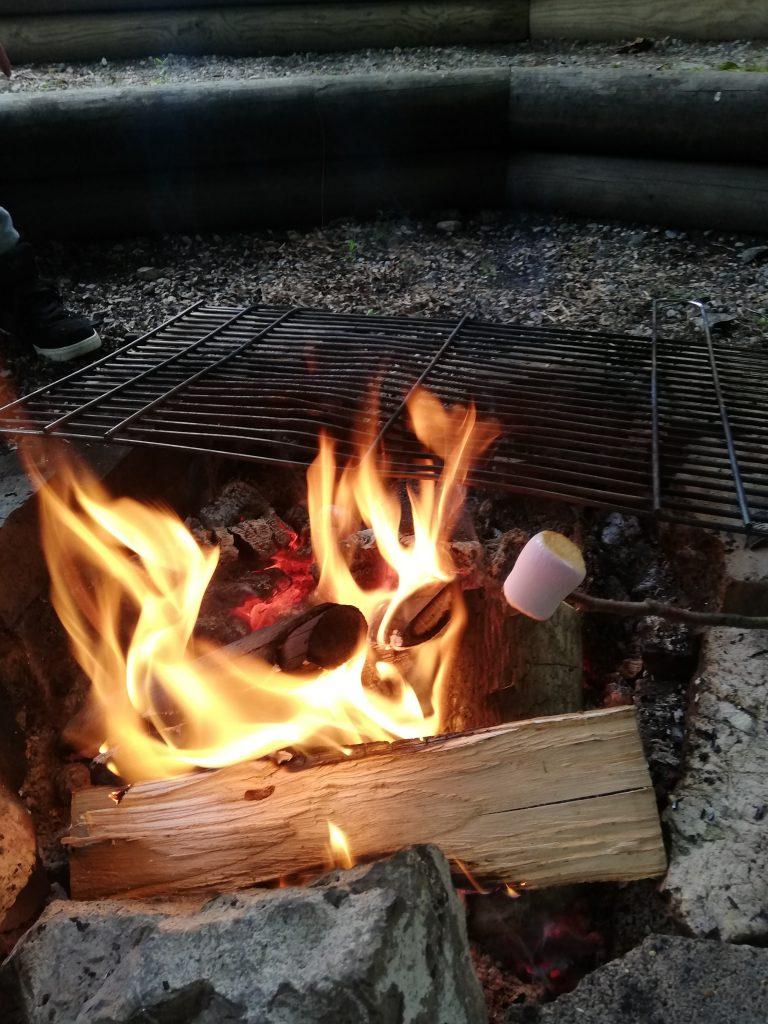 Sommerwochenende Lagerfeuer Marshmallows